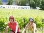 Winelands Cycle Meander