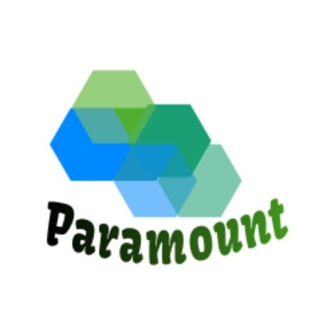 Paramount Web Solutions