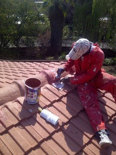 Gutter Cleaning | Roof Maintenance