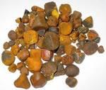 gallstone-saller