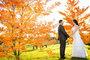 Welgelee Wedding and Wine