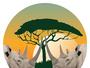 Inside Africa Budget Safaris