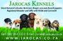 Jarocas Kennels