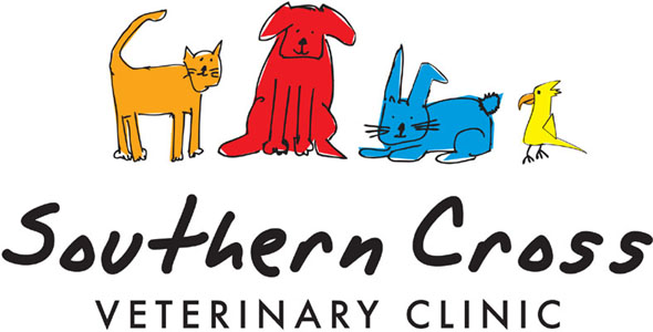 Southern Cross Veterinary Clinic