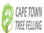 Cape Town Tree Felling